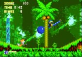 Play Sonic & Knuckles and Sonic III